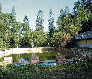 Swimming pool long neglected