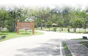 分阶段美化 麻坡猴园或发展休闲走廊