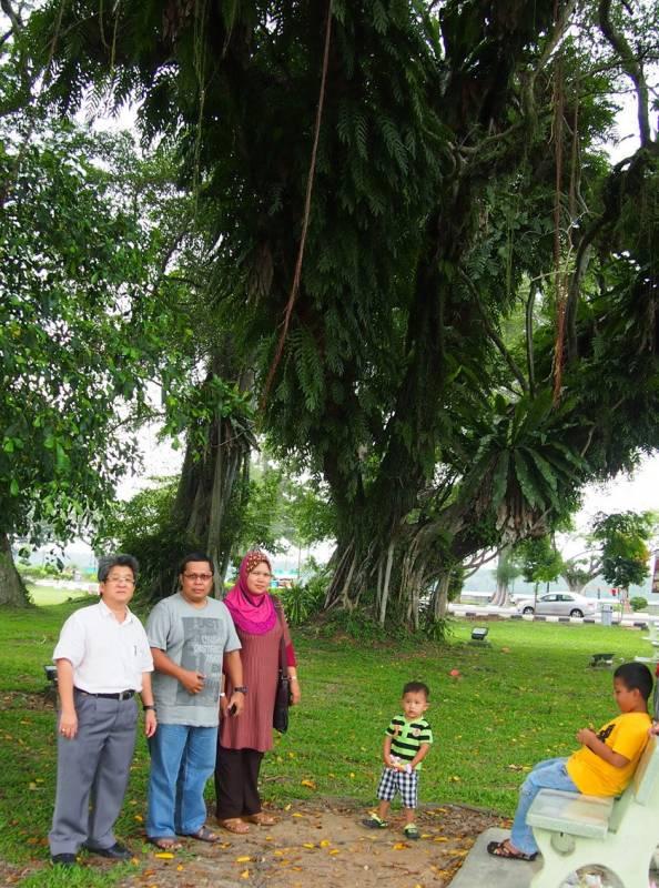 """魏宗賢(左一)促請當局關注麻坡丹絨一帶老樹遭寄生植物""""癡纏""""的問題,左二起為加瑪和妮查。"""
