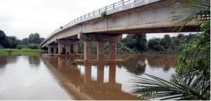 Catfish poser in Muar river