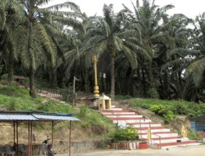 一個夢境引領‧創膜拜聖地‧顏旬園蛇山廟遠近馳名
